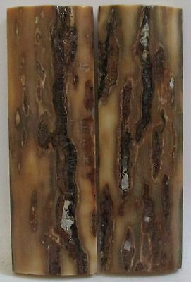 FOSSIL BARK KNIFE SCALES 2-5/16 x 3/4 x 5/32