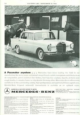 1964 Mercedes Car B/w Magazine Advert