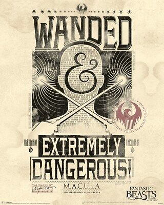 Fantastic Beasts And Where to Find Them Extremely Dangerous Mini Poster 40x50cm