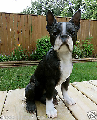 "BOSTON TERRIER DOG FIGURINE resin animal Statue PET16.5"" SITTING PUPPY new"