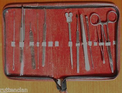 12 Pc  LUSTRA GERMANY & ENGLAND & Other DENTAL Carvers Tweezers TOOL KIT In VGUC
