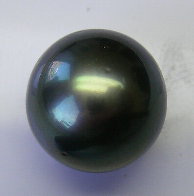 13.9mm!! TAHITIAN BLACK PEARL UNDRILLED 100% UNTREATED +CERTIFICATE AVAILABLE