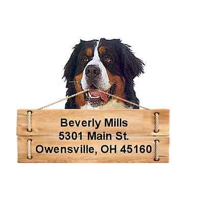 Bernese Mountain Dog return address labels DIE CUT TO SHAPE