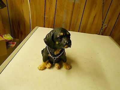 Rottweiler Dog stature  8 inches tall