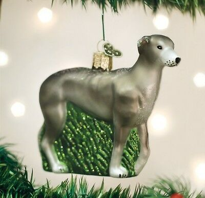 Greyhound (12483) Old World Christmas Ornament
