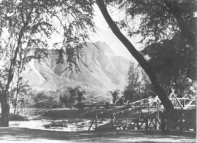 "MAKEE ISLAND (ZOO) WAIKIKI 1890s 11 X 14"" PHOTO HAND PRINTED SILVER HALIDE PHOTO"