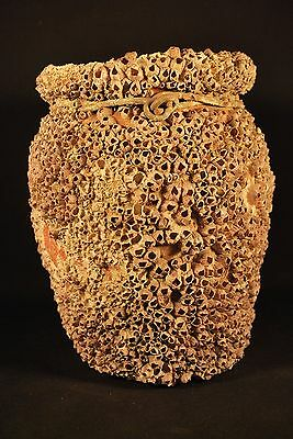ANTIQUE JAPANESE TAKOTSUBO OCTOPUS JAR with BARNACLES / Marine Fishing Pot