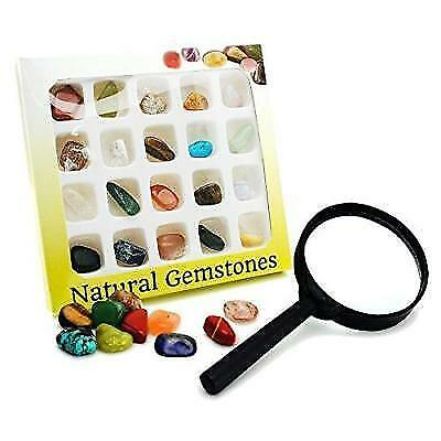 BEADNOVA Gemstone Rock Collection Kit for Kids Geology Science Learning with