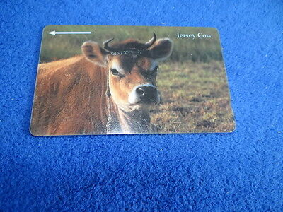 Jersey Telecoms Jersey Cow Phonecard