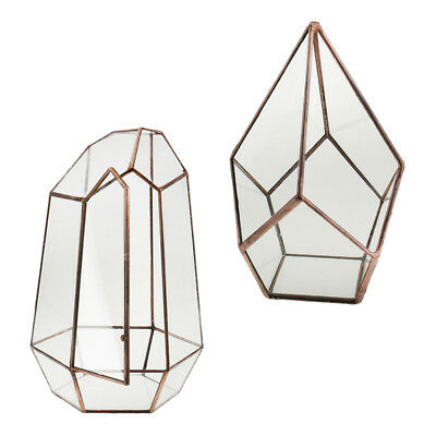 2/set Irregular Glass Geometric Terrarium Tabletop Succulent Plant Planter
