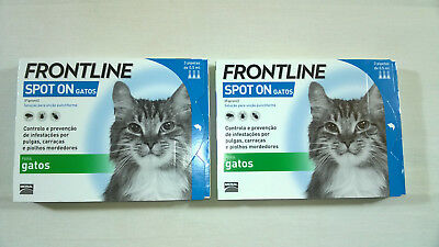 FRONTLINE  Spot On  for Cats - 6 pipettes  (2x3 = 6 treatments)