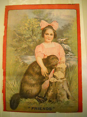 DR JONES BEAVER OIL Victorian medicinal remedy COVER PAGE ONLY CHROMO ALBANY NY