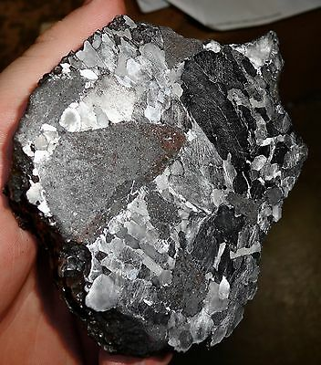 Beautiful 830 Gm. Etched Silicated Campo Del Cielo Meteorite End Cut