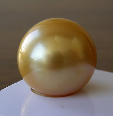 16.9mm!! AUST GOLD SOUTH SEA ROUND PEARL 100% UNTREATED UNDRILLED +CERT INCLUDED