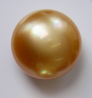 AUSTRALIAN GOLD 16.8mm! SOUTH SEA PEARL UNDRILLED 100% UNTREATED +CERT AVAILABLE