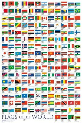 Flags Of The World Poster 61 x 91.5cm