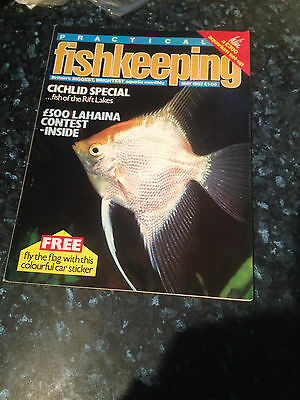 PRACTICAL FISHKEEPING -Cichlid Special-fish of the Rift Lakes-May 1987