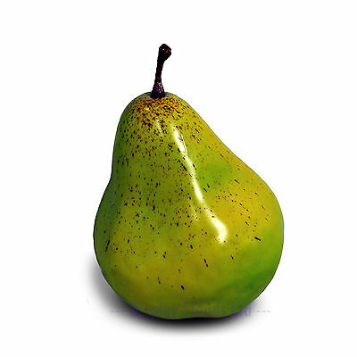 Artificial Pear Realistic Fake Fruit Retail Display Prop  (FF2)