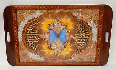 """Large Brazilian Iridescent Butterfly Wing Art Serving Wood Tray Inlay Border 25"""""""