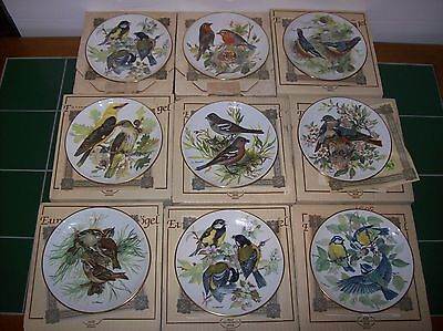 BIRDS OF EUROPE by Ursula Band Collector Plates 1986 (Set of 9) GERMANY w/ COA's