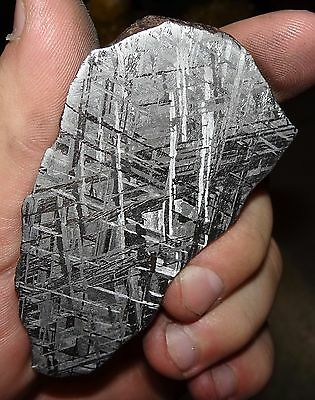 Beautiful 118 Gm Etched Gibeon Meteorite Slice From Namibia