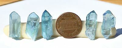Aqua Aura Arkansas Quartz 1 lot 5 crystals L 19-21mm W 8-10mm