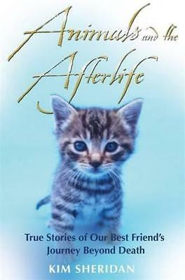 Animals And The Afterlife by Kim Sheridan | Paperback Book | 9781848502420 | NEW