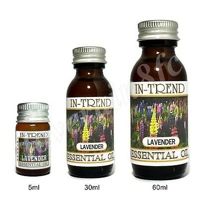 Lavender Essential Oil 100% Pure Many Sizes Free Shipping