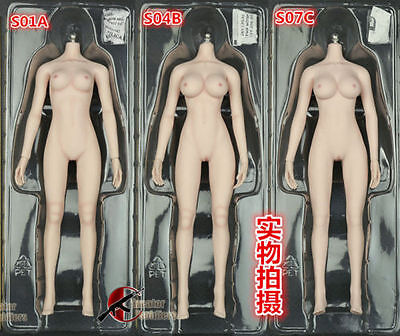 1:6 Seamless Body Medium Breast Pale Skeleton S01A Flexible 12'' Figure Body Toy