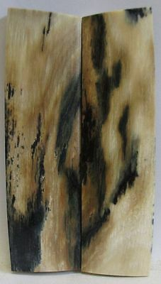 Fossil Bark Knife Scales 3-1/16 X 7/8 X 3/16