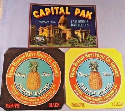 Crate Labels - Tattered Set Of 3 From Florida And California - Original Labels