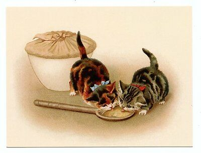 modern cat postcard Maguire tabby & calico cats kittens lick spoon from big pie