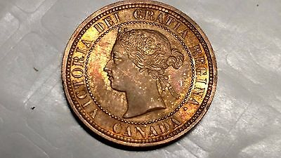 1881 H Canadian Large Cent Choice/gem Brilliant Uncirculated Beautiful Coin !!