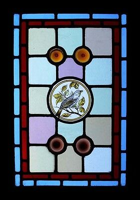 Pretty Painted Bird In Foliage & Rondels Victorian English Stained Glass Window