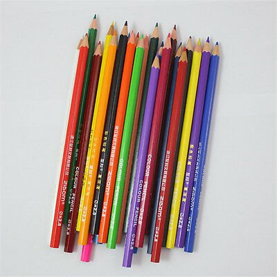 24 Artist Professional Fine Drawing Pencils Colored Pencils Writing Sketching C