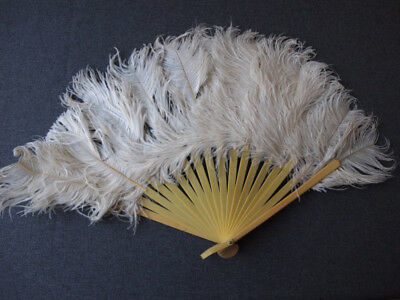 Antique Flapper Creamy Celluloid Off White Feathers Brise Hand Fan