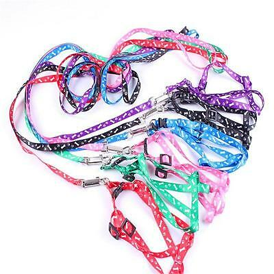 Small Dog Pet Puppy Cat Adjustable Nylon Harness +  Lead leash Traction rope PP: