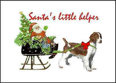 Welsh Springer Christmas cards seals address labels 120 piece set laser print