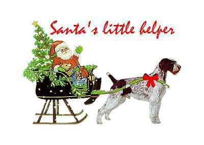 German Wirehaired Christmas cards seals address labels 120 piece set laser print