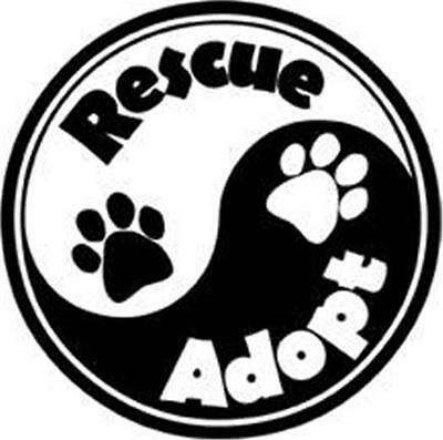 "Yin Yang Rescue Adopt Dog Cat Paws Car Fridge Plastic Magnet 5.25"" Gift Ying"