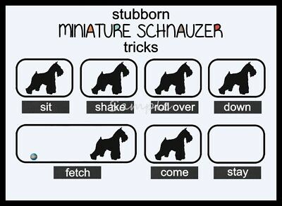 MINIATURE SCHNAUZER Stubborn Tricks Funny LARGE FRIDGE MAGNET