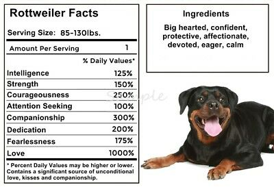 ROTTWEILER Facts LARGE FRIDGE MAGNET