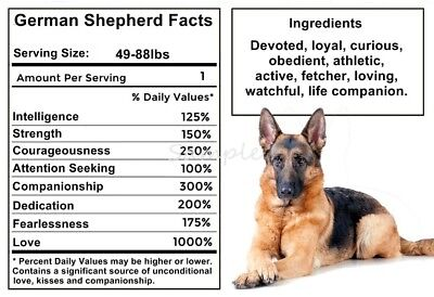 GERMAN SHEPHERD Facts LARGE FRIDGE MAGNET