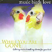 Bradley Joseph - Music Birds Love: While You Are Gone New Cd
