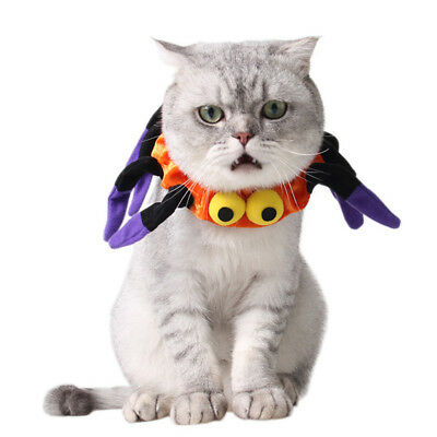 Newly Pet Halloween Costume Spider Shape Collar Dog Cat Festival Party Accessory