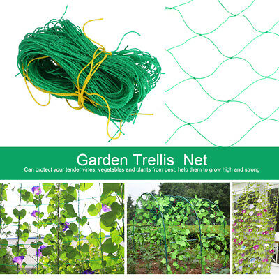 1/5/10X 1.8m*1.8m Climbing Flower Grape Vine Planting Net Yard Gardening PE Net