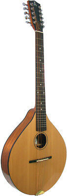 Ashbury Style E CELTIC CITTERN, Solid spruce top & sapele body. British design.