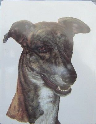 Retired GREYHOUND Softcover Address Book art by Robert May