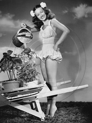 Noel Neill   leggy in swimsuit   8x10 photo   cheesecake pinup
