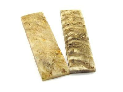 New-Knife-Parts-Kits-Accessories : Exterior Sheep Horn Handle Slabs